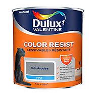 Peinture murs et boiseries Dulux Valentine Color Resist gris ardoise mat 2,5L
