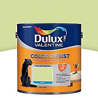 Peinture murs et boiseries Dulux Valentine Color resist vert fluorine mat 2,5L