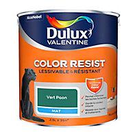 Peinture murs et boiseries Dulux Valentine Color Resist vert paon mat 2,5L