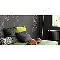 Peinture murs et boiseries Dulux Valentine Crème de couleur anthracite satin 2,5L