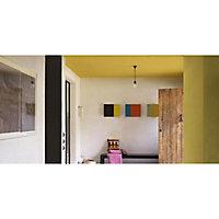 Peinture murs et boiseries Dulux Valentine Crème de couleur noir satin 2,5L