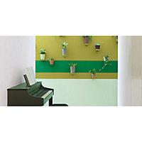 Peinture murs et boiseries Dulux Valentine Crème de couleur verte d'eau satin 2,5L