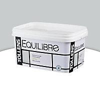Peinture murs et boiseries Tollens Equilibre gri-gri satin 2,5L