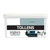 Peinture murs et boiseries Tollens eucalyptus satin 2,5L