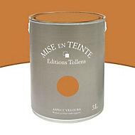 Peinture murs et boiseries Tollens Mise en teinte cuir mat velours 3L