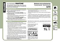 Peinture murs et boiseries Tollens Pantone 18-4005 steel gray satin 1L