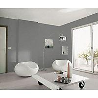 Peinture murs et boiseries Tollens Pantone 18-4005 steel gray satin 2L