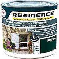 Peinture rénovation multi-supports Résinence pinède satin Résinence 0,25L