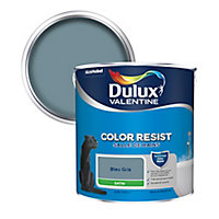 Peinture salle de bain Dulux Valentine bleu gris satin 2,5L