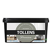 Peinture Tollens premium murs, boiseries et radiateurs vert scandinave mat 2,5L
