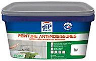 Peinture traitement anti-moisissures DIP Blanc 2.5 L
