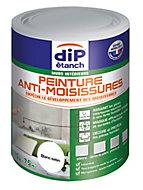 Peinture traitement anti-moisissures DIP Blanc 750 ml