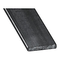 Plat acier verni 20 x 4 mm, 2 m