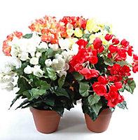 Pot Begonia artificiel