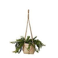 Pot suspendu herbes marines naturel 12 cm