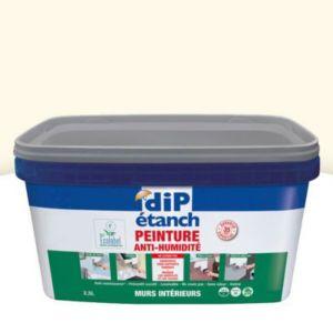 Peinture Anti Humidité Murs Intérieurs Dip Crème 2 5l Castorama