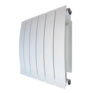 radiateur eau chaude blyss nonda 769w castorama. Black Bedroom Furniture Sets. Home Design Ideas