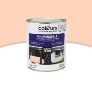 peinture fa ade universelle colours beige ros 0 75l castorama. Black Bedroom Furniture Sets. Home Design Ideas