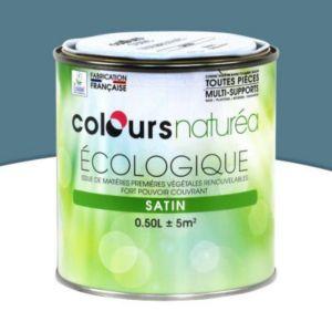 peinture multi supports colours natur a pierre bleue satin 0 5l castorama. Black Bedroom Furniture Sets. Home Design Ideas