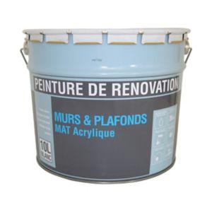 Peinture Rénovation Murs Et Plafonds Blanc Satin 10l Castorama