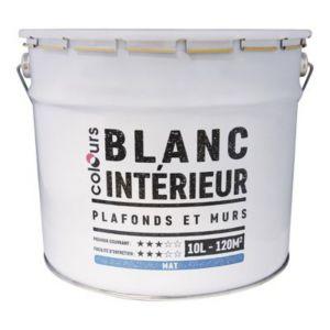 Peinture Plafonds Et Murs Colours Blanc Mat 10l Castorama