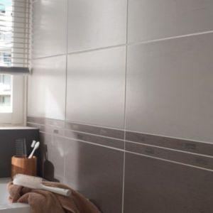 carrelage mur gris clair 25 x 40 cm bambou vendu au carton castorama. Black Bedroom Furniture Sets. Home Design Ideas