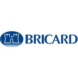 BRICARD logo