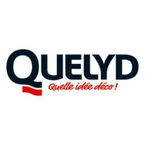 Quelyd logo