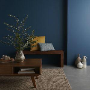 Voir Peinture intérieure couleur details