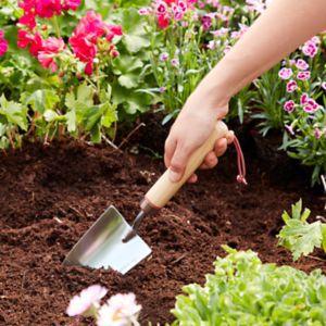 Voir Petit outil du jardin details