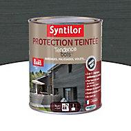 Protection teintée bois Syntilor Anthracite 1L - 8 ans