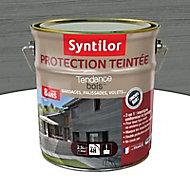 Protection teintée bois Syntilor Gris naturel 2,5L - 8 ans