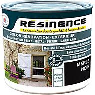 Résine de rénovation multi-support merle noir satin Résinence 0,25L