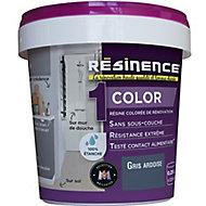 Résine multisupports Résinence Color ardoise satin 0,25L