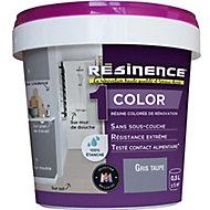 Résine multisupports Résinence Color gris taupe satin 0,5L