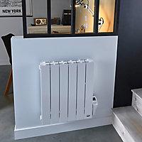 Radiateur électrique à inertie sèche Blyss Zumba 1000W