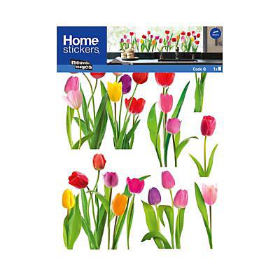 Sticker Vitres Tulipes Castorama