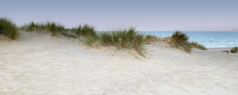 Tableau En Verre Dunes 50 X 125 Cm Castorama