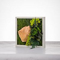 Tableau végétal stabilisé mono