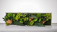 Tableau végétal stabilisé panoramique