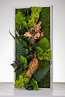 Tableau végétal stabilisé rectangle