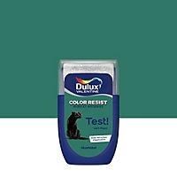 Testeur peinture murs et boiseries Dulux Valentine Color Resist vert paon mat 30ml