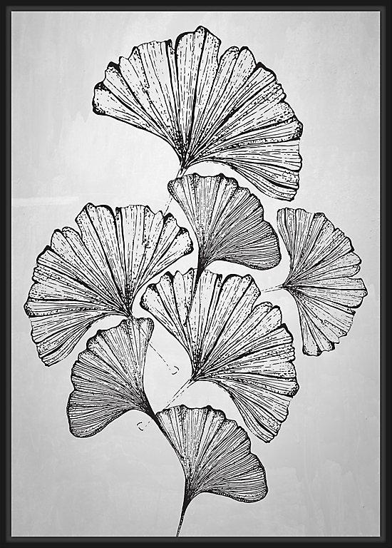 Toile Caisse Americaine Flowers 65x92cm Noir Et Blanc Dada Art Castorama