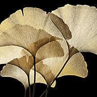 Toile imprimée feuilles 75 x 75 cm